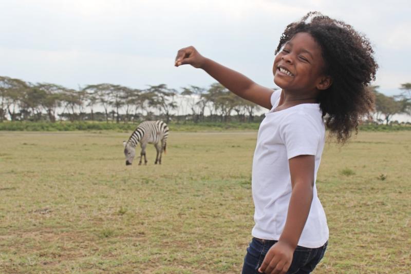 little girl playing in a field of zebras