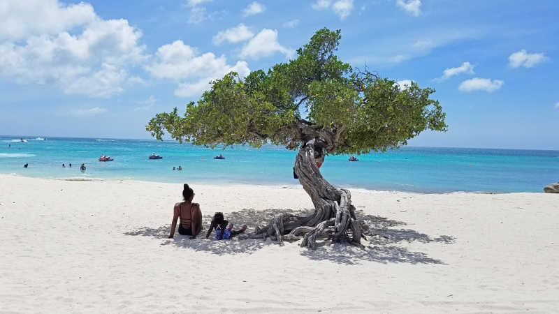 mom and daughter sitting under a divi divi tree at the beach