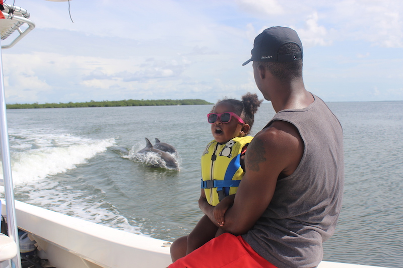 dad and daughter watching dolphins from boat