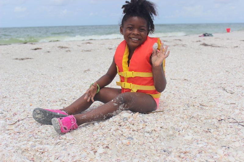 little girl sitting on the beach collecting shells