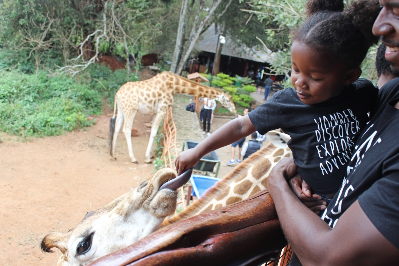 8 Days in Kenya Girl Feeding Giraffe