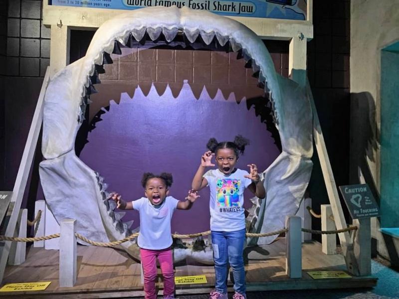 Tampa Bay CityPASS The Florida Aquarium Tampa with Kids-2