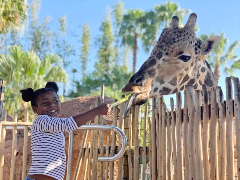 Exploring Tampa with Kids via the Tampa Bay CityPASS
