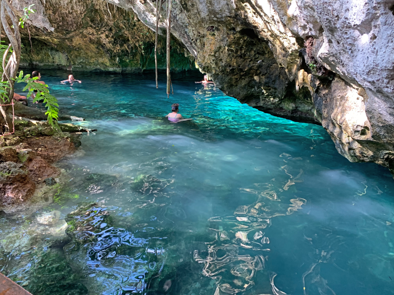 The Best Cenotes in Tulum Gran Cenote Tulum