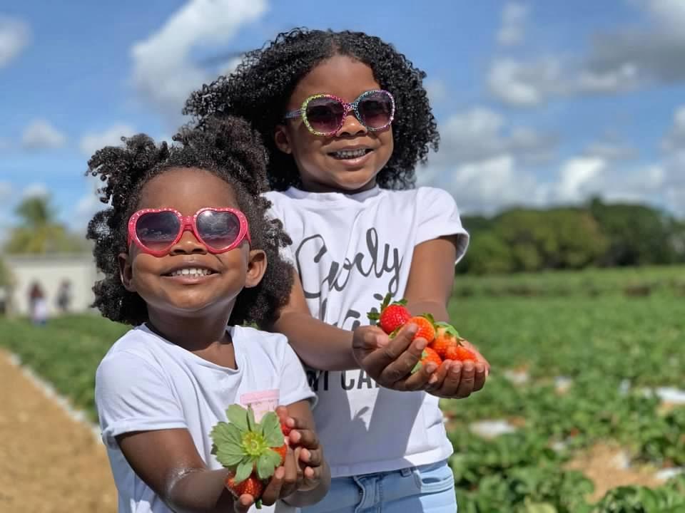 Miami with Kids Knaus Berry Farm