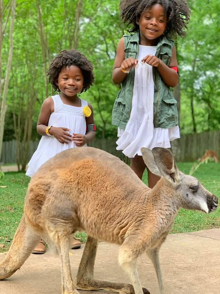 Two black children hopping next to a kangaroo in the zoo