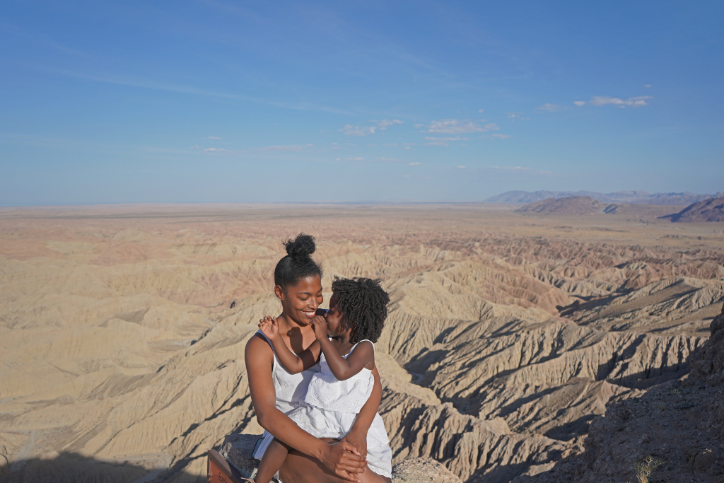 Things To Do In Anza Borrego State Park The Traveling Child,Most Googled Question In Each State