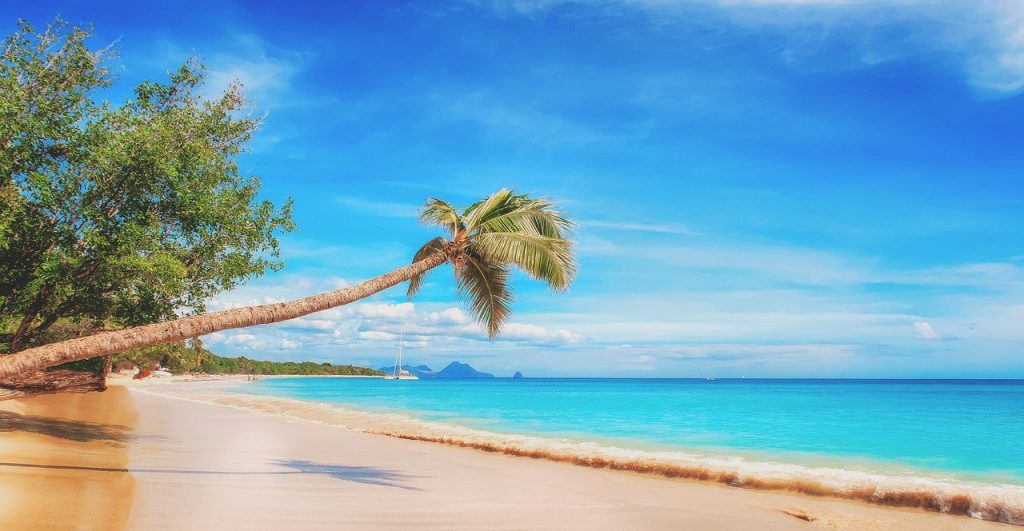 Caribbean beach with smooth sandy shores, turquoise waters a sail boat in the distance and a palm tree jetting out into the water.